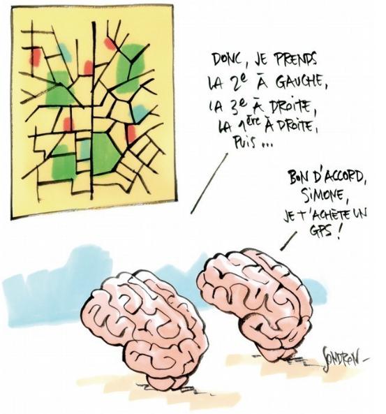 Sujet TEDx Paris 2011 : le cerveau a t-il un sexe